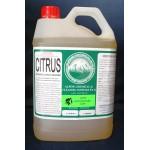 5LT CITRUS (DISINFECTANT CLEANER)